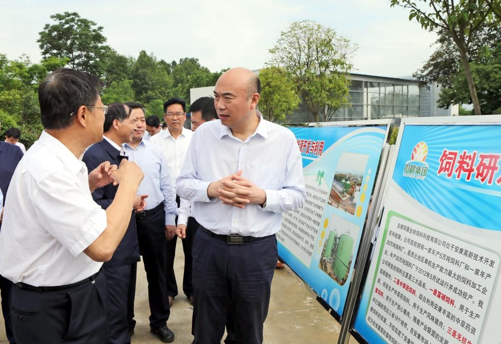 省长刘国中来阳晨集团汉阴基地调研循环产业发展